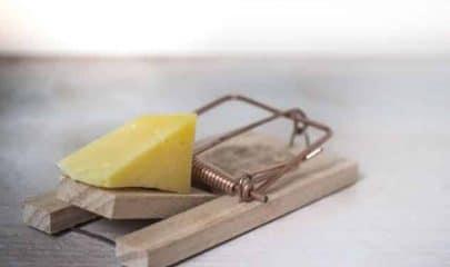 trappola per topi con formaggio